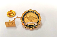 Bachelor of Science in Nursing Pin